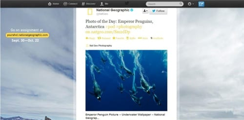 Twitter Card-National Geographic-2
