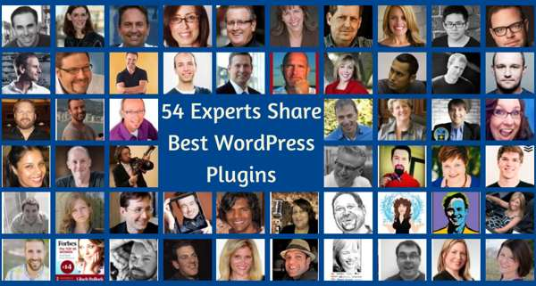 Top-Experts-and-Plugins