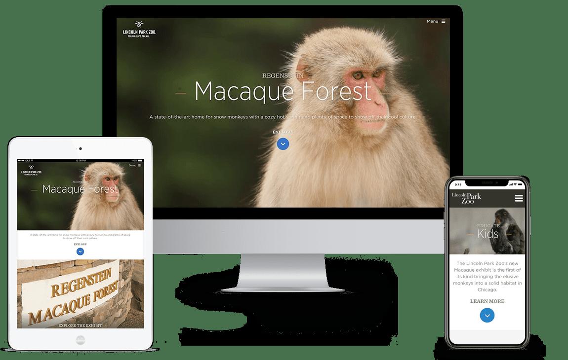 LP Zoo Regenstein Macaque Forest